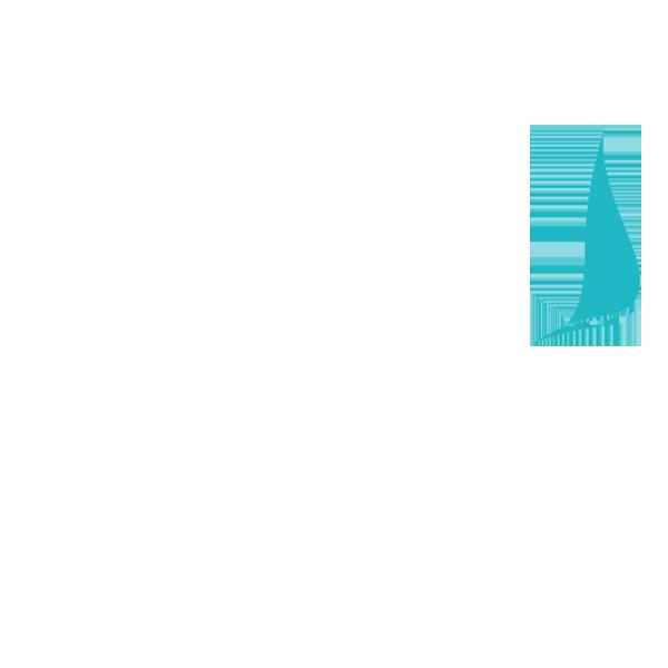 Nardone Team
